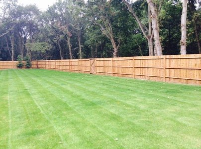Primary thumb traditional closeboard fencing on wooden posts
