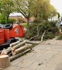 Square thumb brushwood chipper