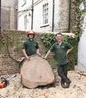 Square thumb tree removal in richmond