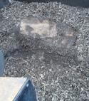 Square thumb 20131203 130518
