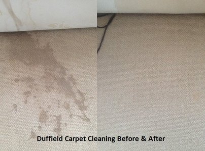 Primary thumb duffield carpet cleaning before   after