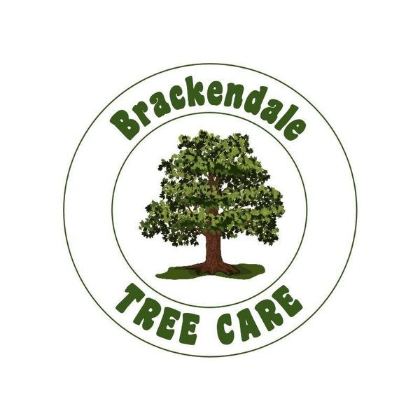 Gallery large brackendale new logo