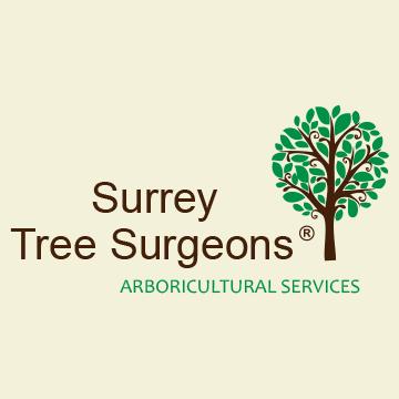 Gallery large surrey tree surgeons arb services facebook logo 360x360 ariel