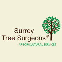 Profile thumb surrey tree surgeons arb services facebook logo 360x360 ariel