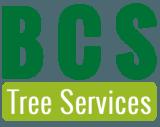 Profile thumb bcs logo