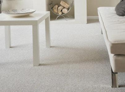 Primary thumb carpet