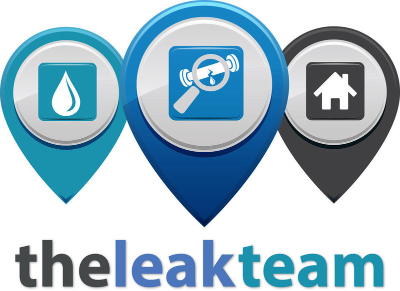 Gallery large leakteam branding v7   white bgnd smaller