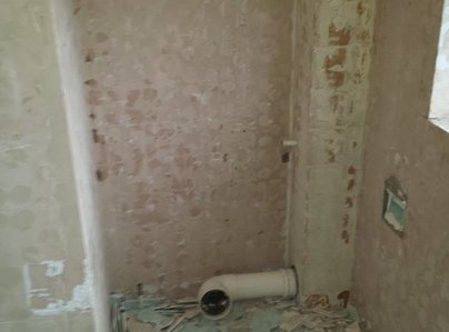 Primary thumb toilet before