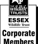 Square thumb essex wildlife corplogo