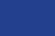 Profile thumb camview logo