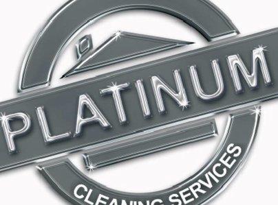 Primary thumb platinum logo