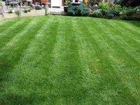 Profile thumb christchurch lawn1 400 300 75 s c1