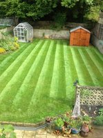 Profile thumb greenthumb croydon lawn1 596 800 75 s