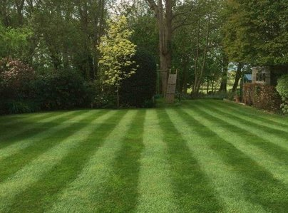 Primary thumb worthing customers lawn 600 800 75 s