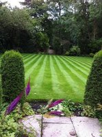 Profile thumb garden