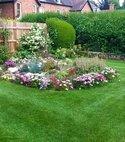 Square thumb solihull lawn5 800 543 75 s