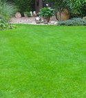 Square thumb solihull lawn2 800 594 75 s