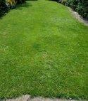 Square thumb solihull lawn4 600 800 75 s