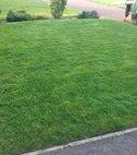 Square thumb redcar lawn2 600 800 75 s