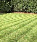 Square thumb 0301 birmingham north lawn 3 400 300 75 s c1