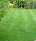 Square thumb notts north lawn1 400 300 75 s c1