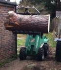 Square thumb treework2