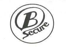 Gallery large bsecure logo