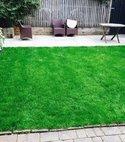 Square thumb lush london lawn