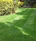 Square thumb lawn 2