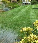 Square thumb lawn