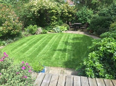 Primary thumb lawn 3