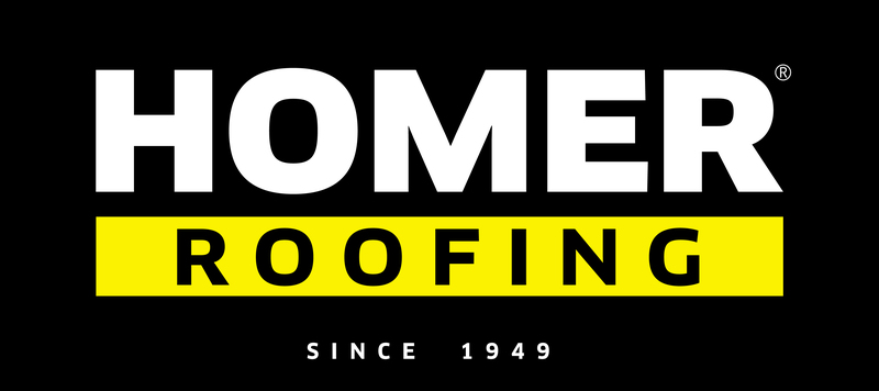 Gallery large homer reg logo