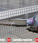 Square thumb pigeon proofing