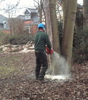 Square thumb chainsaw treework
