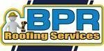 Gallery large bpr logo with stripes