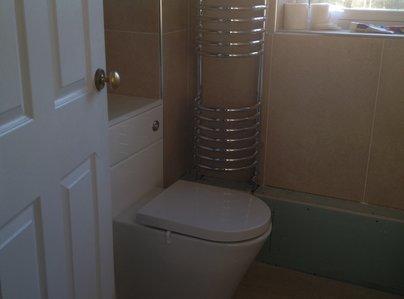 Primary thumb toilet