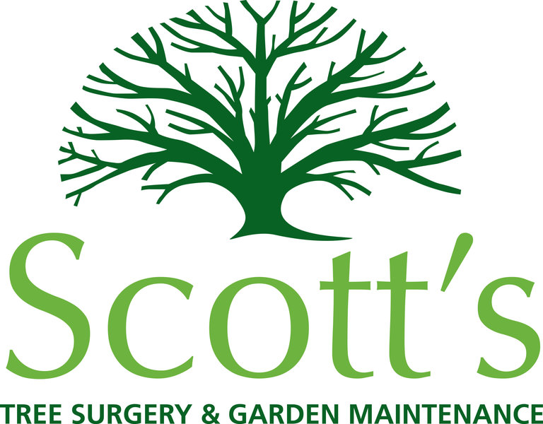 Gallery large logo scotts
