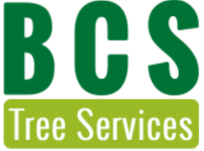 Primary thumb bcs logo