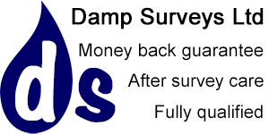 Gallery large which damp survey