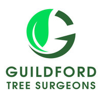 Profile thumb guildford tree surgeons v1 logo 500x500 facebook