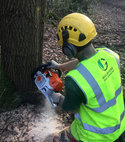 Square thumb guildford tree surgeons forestry aquamaintain south east rivers trust