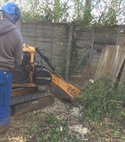 Square thumb guildford tree surgeons tree stump removal