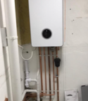 Square thumb boiler3