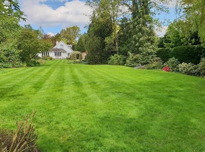 Primary thumb cobham lawn