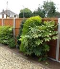 Square thumb fencing driveways patios paving garden maintenance landscaping sunshine gardens christchurch dorset v1