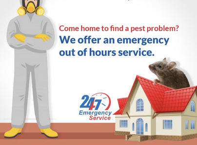 Primary thumb emergency pest control service